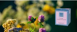Lavendel, Alpenveilchen & Meersalz